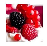 红梅  Cranberry      【香调:花果香调】